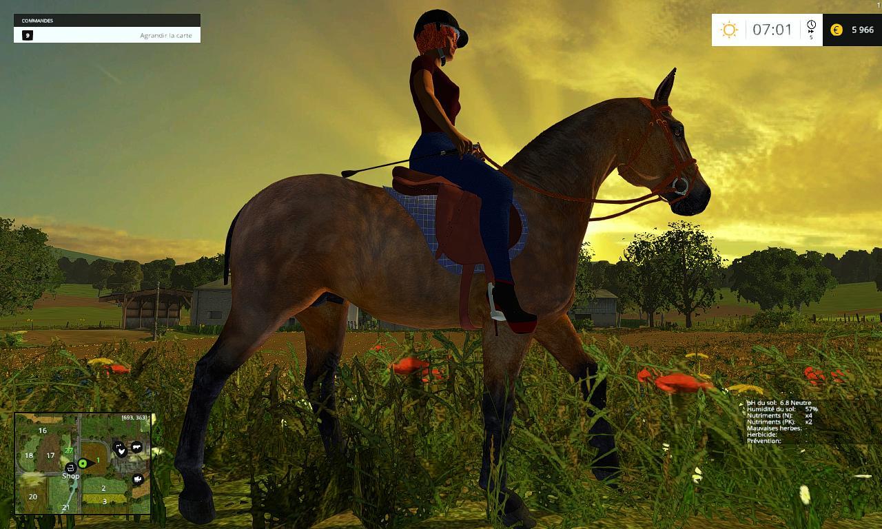 equestrianwoman_5