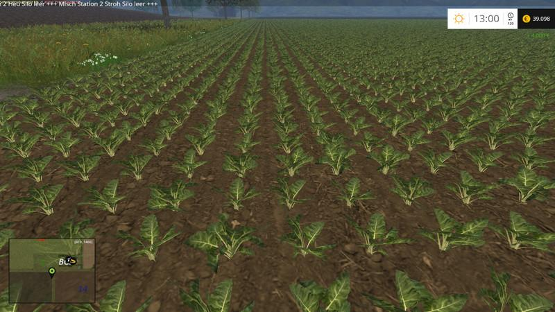 change-row-spacing-with-beets-v1-0_1