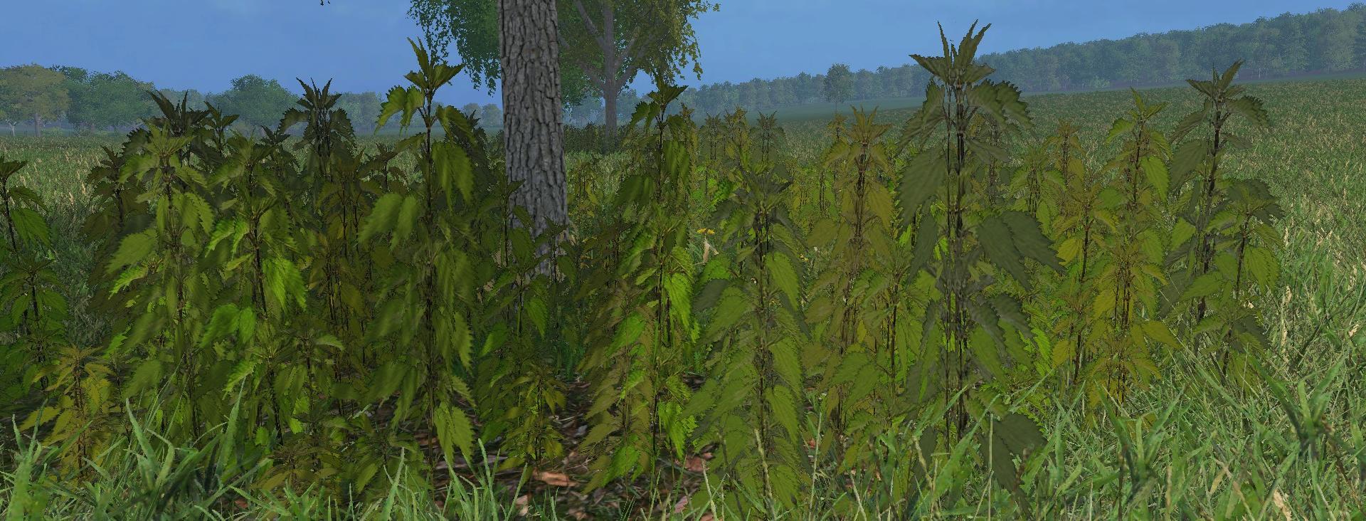nettles-foliage-texture-v1-0_2